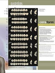 Products Ceraform Porcelain Teeth Specialty Tooth