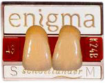 enigma teeth available in pairs.